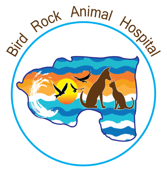 Bird Rock Animal Hospital